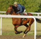 Rhythm Stick with Clare Lindop up working at Newmarket